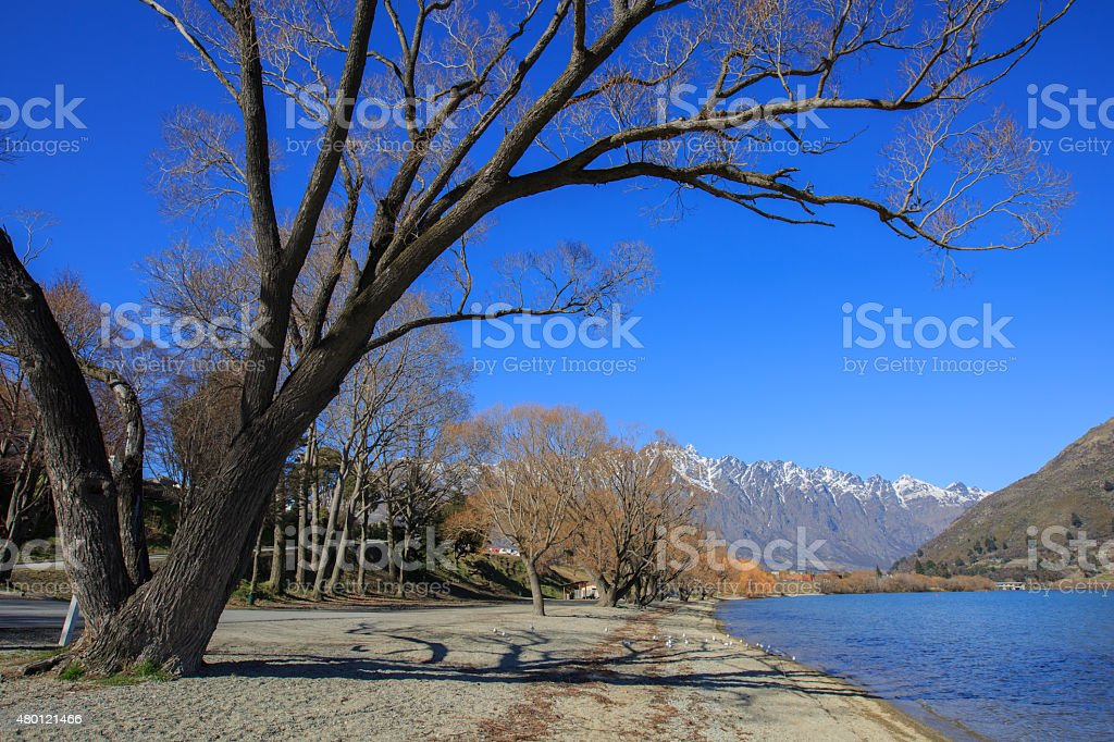 Frankton beach and the Remarkables, Queenstown, New Zealand stock photo