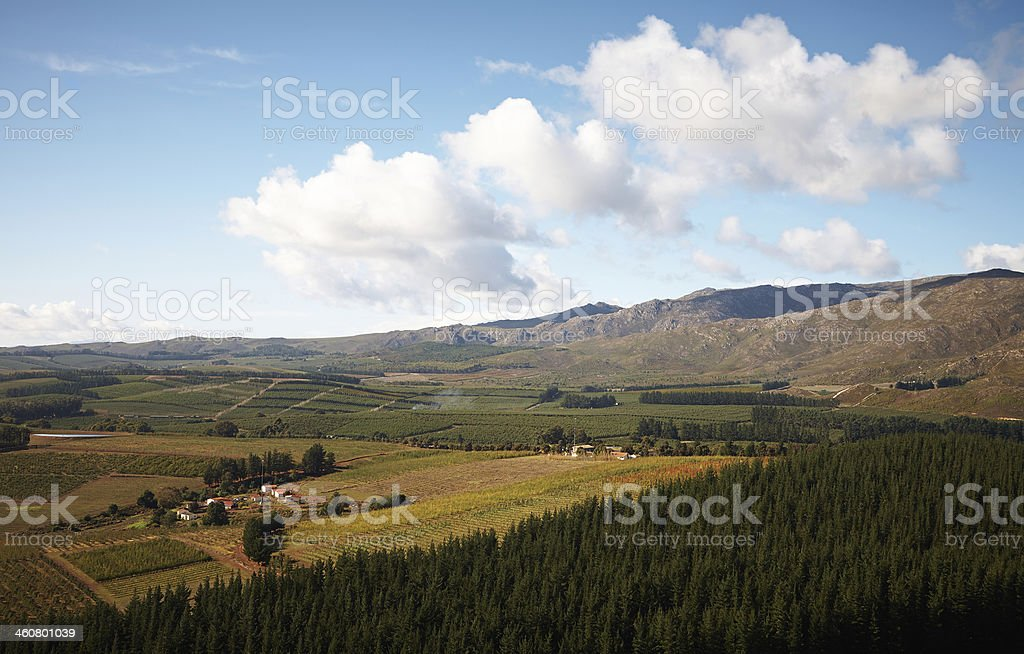 Franschhoek landscape stock photo