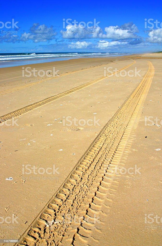 Fraser Island, Australia royalty-free stock photo