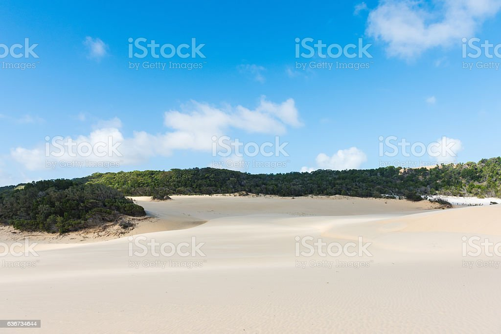 Fraser Island desert sand dune landscape in Queensland, Australia stock photo