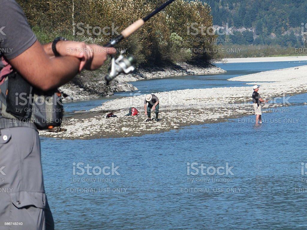 Fraser River Salmon Run stock photo