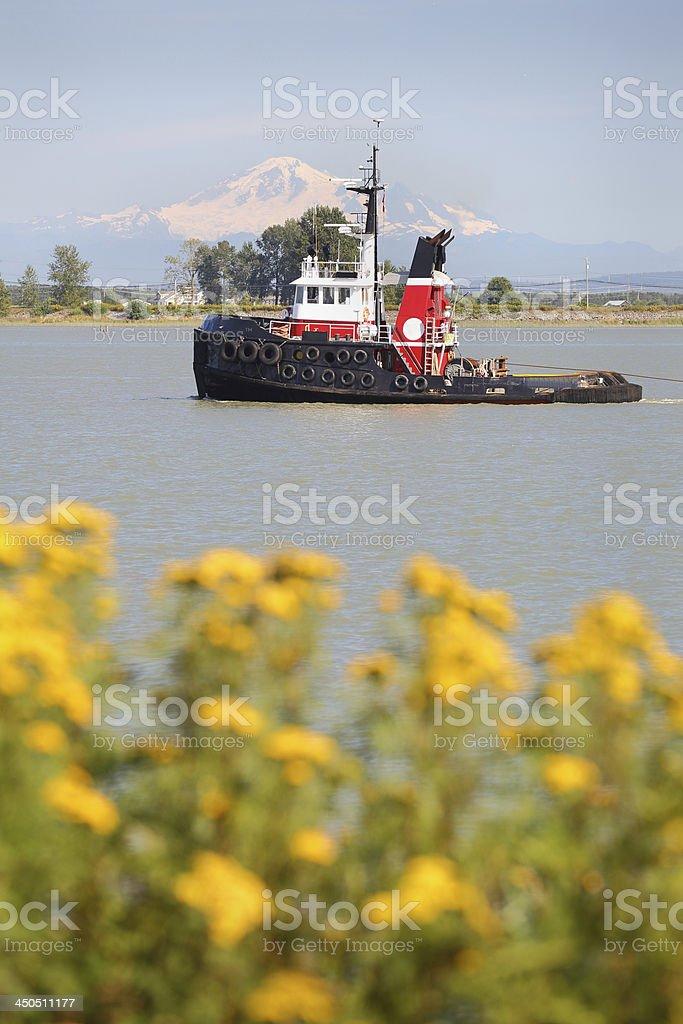 Fraser River Tugboat stock photo