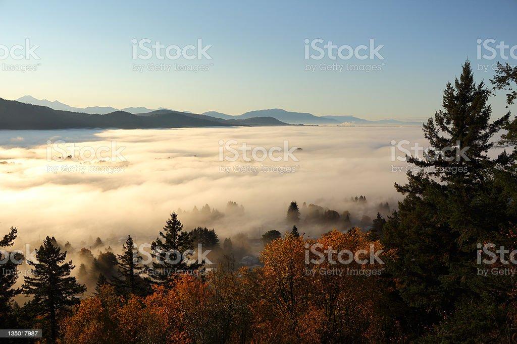 Fraser Valley Fog, British Columbia stock photo