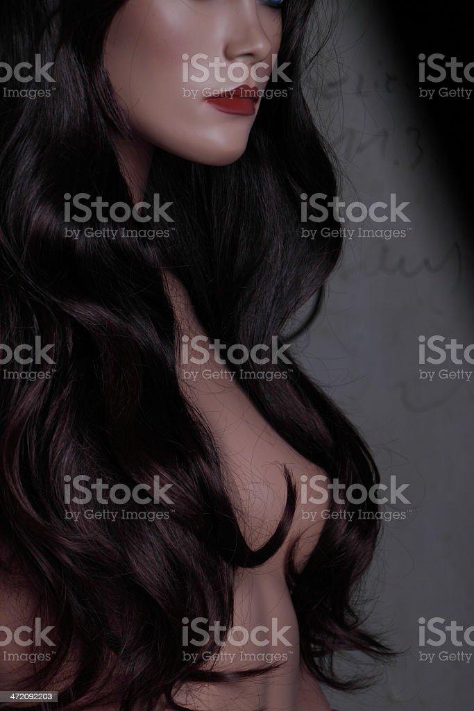 Frau mit langen braunen Haaren royalty-free stock photo