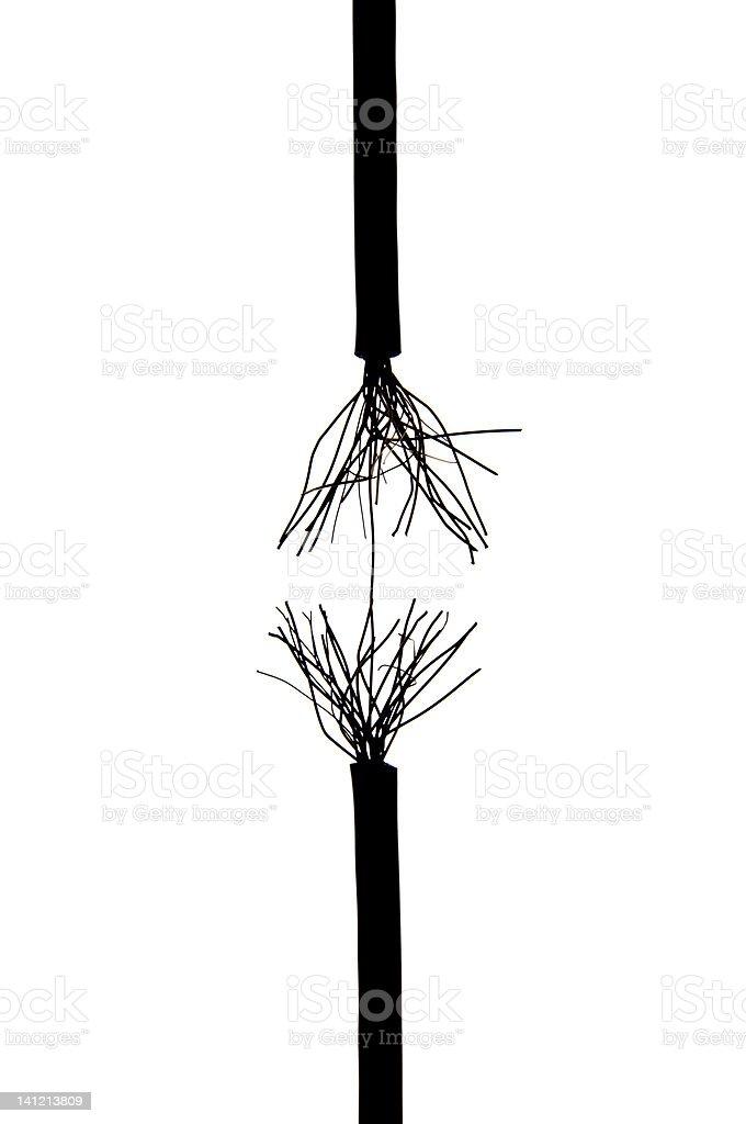 Frayed rope stock photo