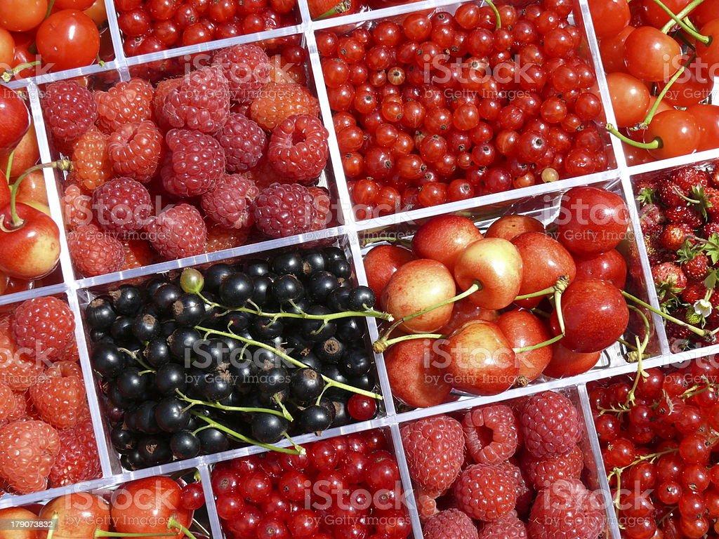 Früchte photo libre de droits