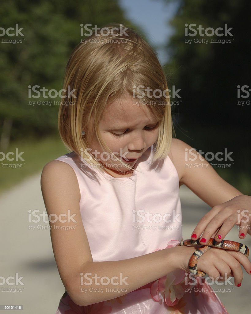 Freaked Out Little girl with her King Snake stock photo