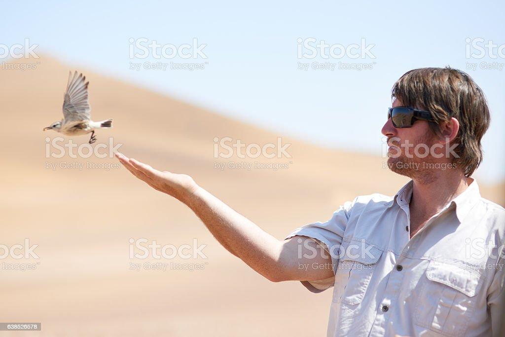Free as a bird stock photo