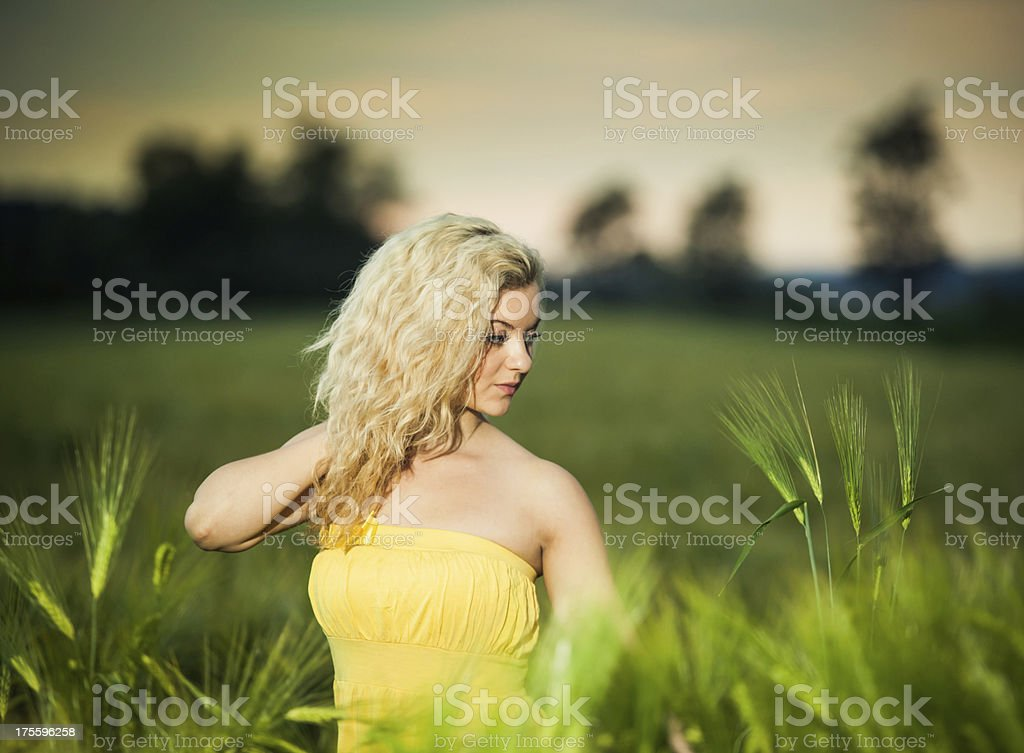 Free at the field royalty-free stock photo