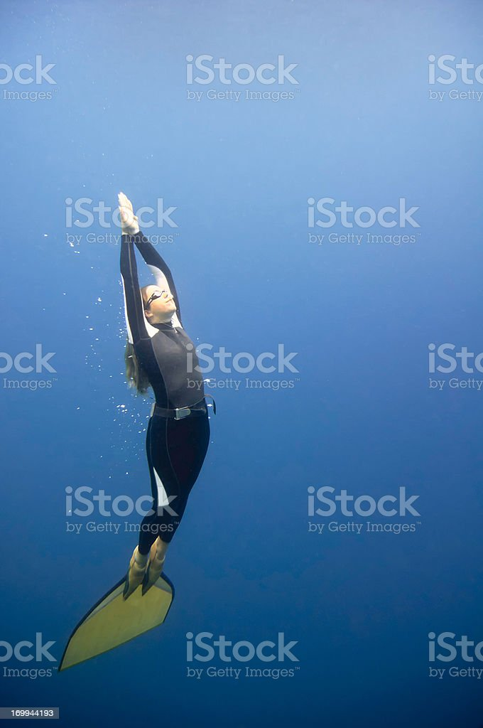 Free diver in the blue stock photo