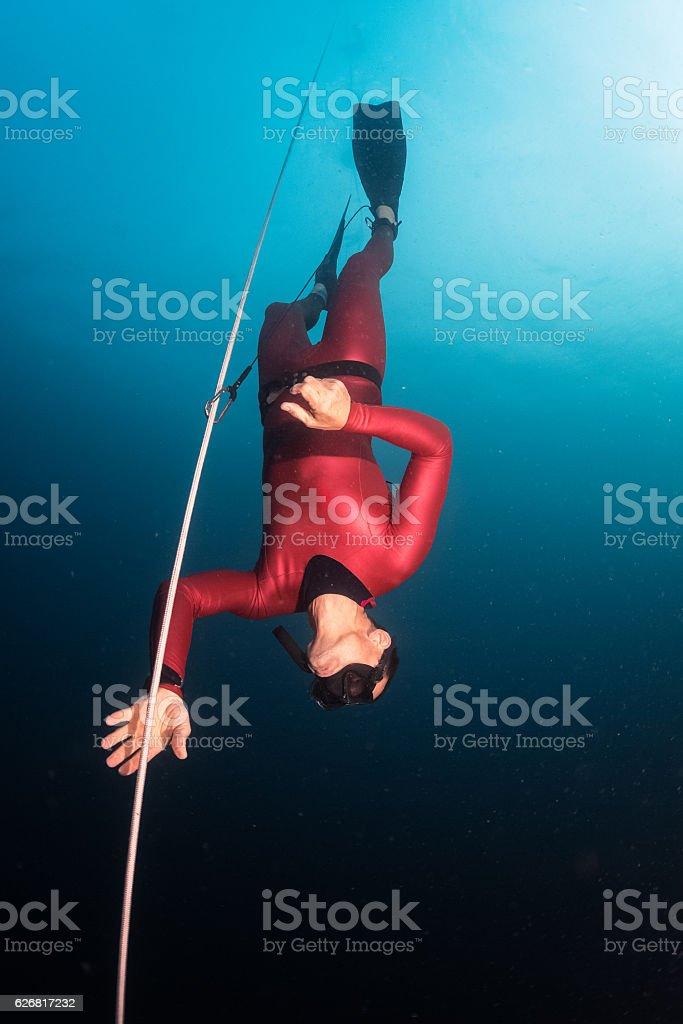 Free diver stock photo