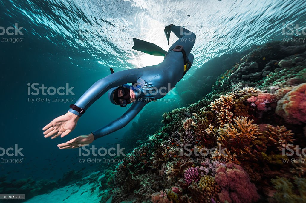 Free divers stock photo