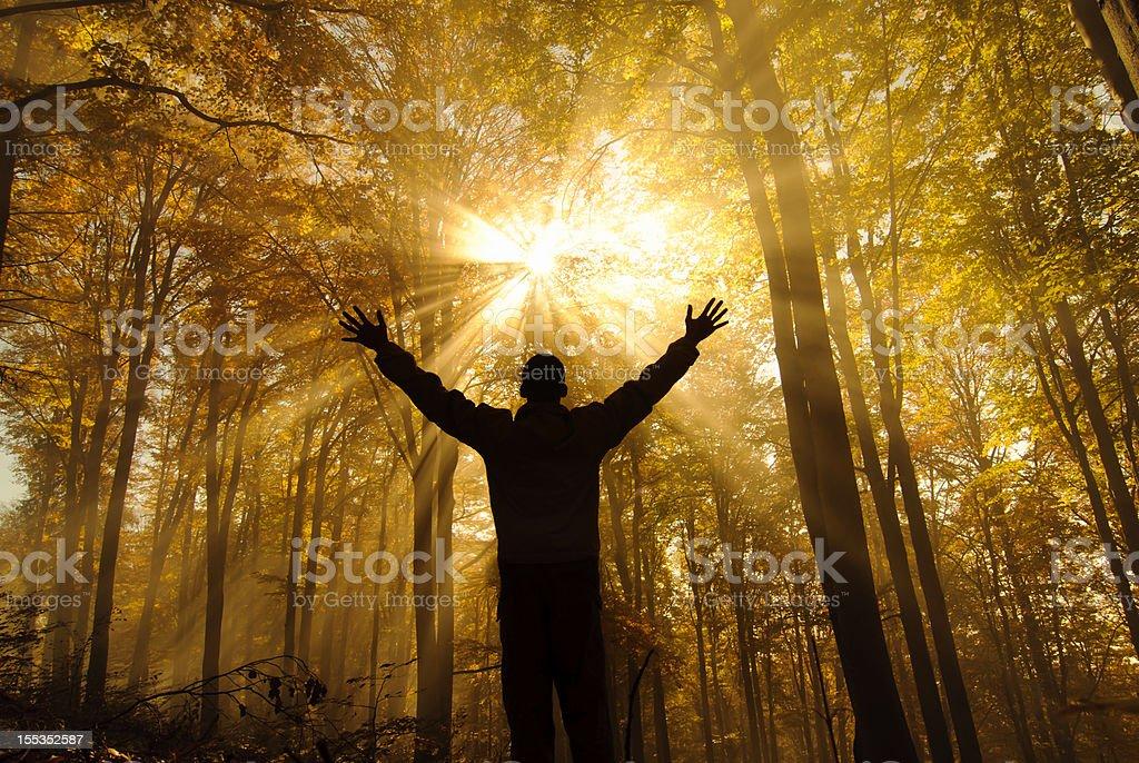 free in autumn season stock photo