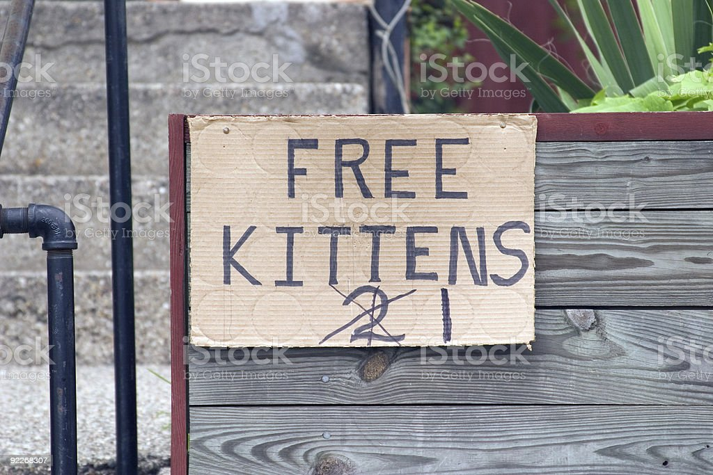 Free Kittens Sign royalty-free stock photo