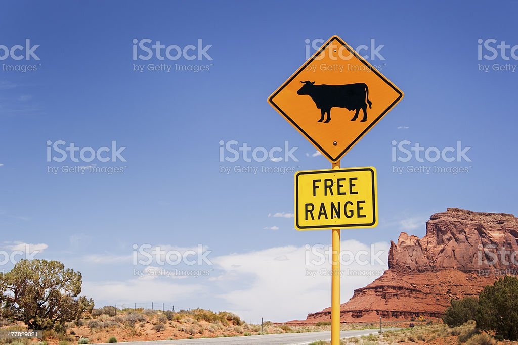 Free Range Cattle Crossing Road Sign in the Western USA royalty-free stock photo
