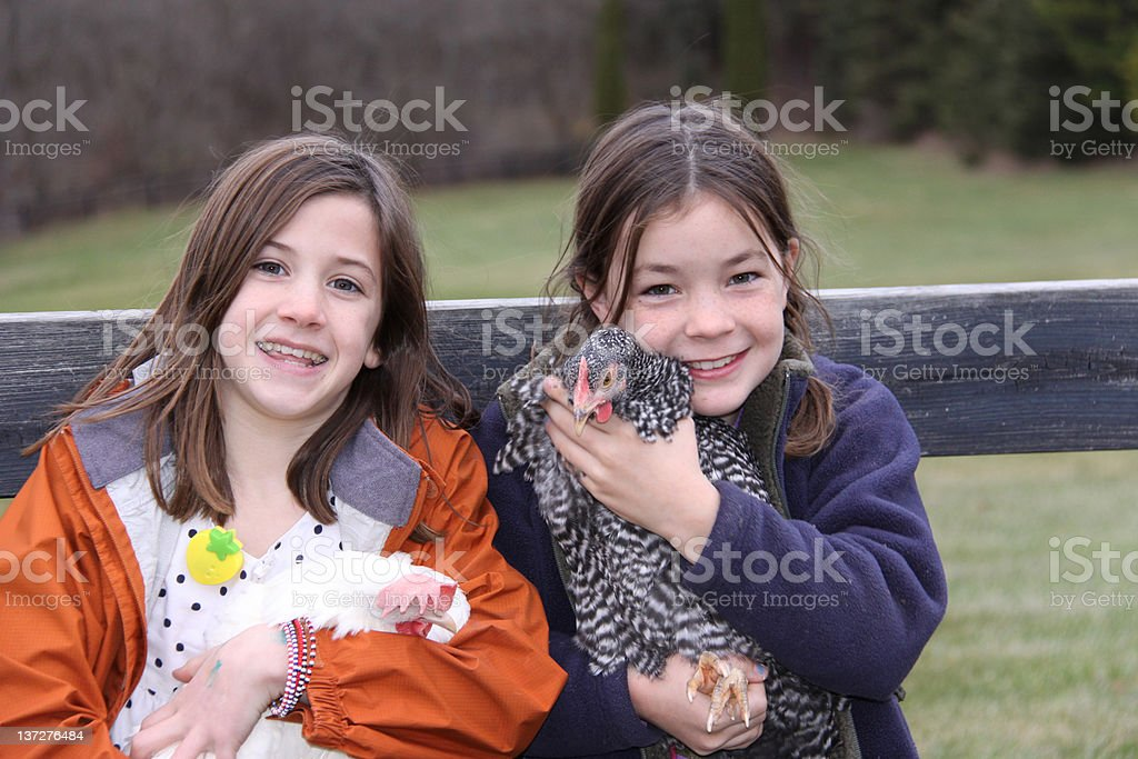 Free Range Chicks with Young Girls royalty-free stock photo