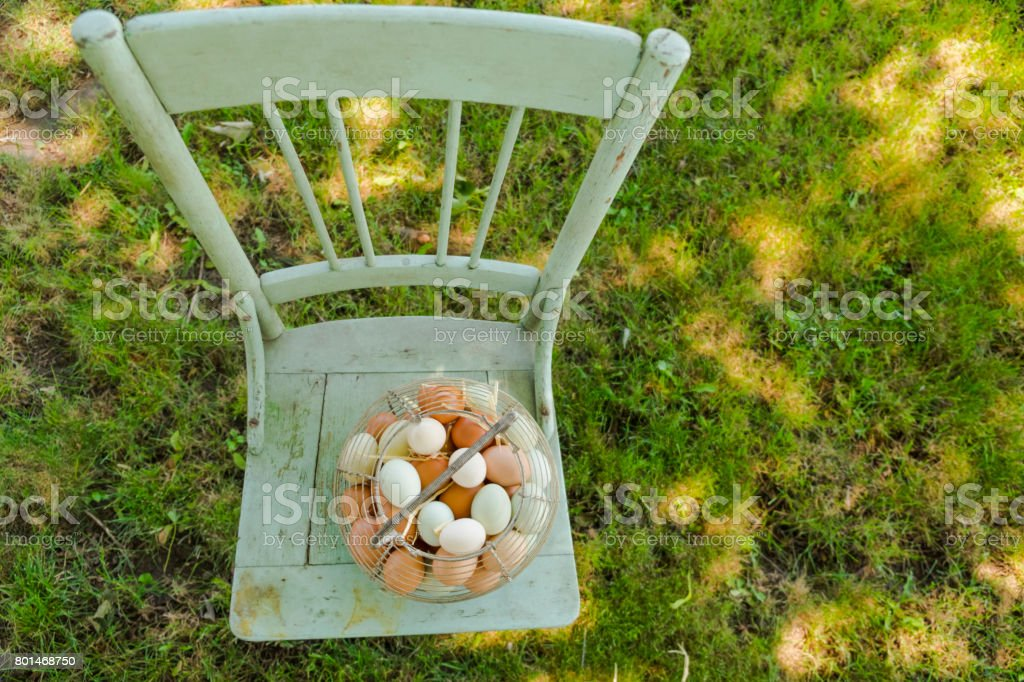 Free Run Chicken Eggs In Wire Egg Baskets On An Old Chair stock photo