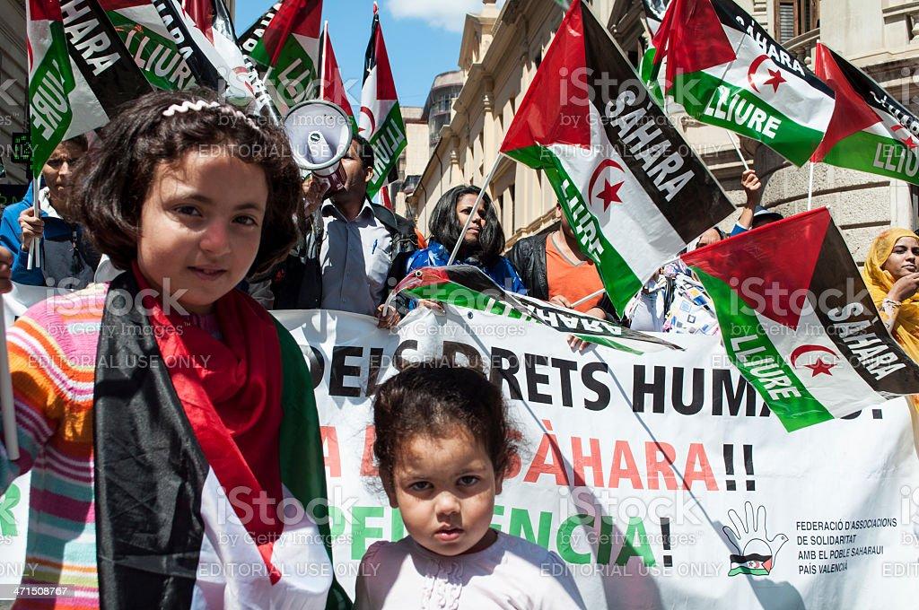 Free Sahara royalty-free stock photo