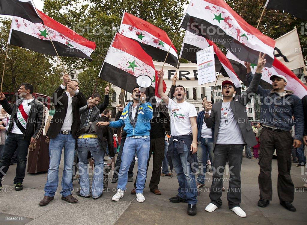 Free Syria royalty-free stock photo