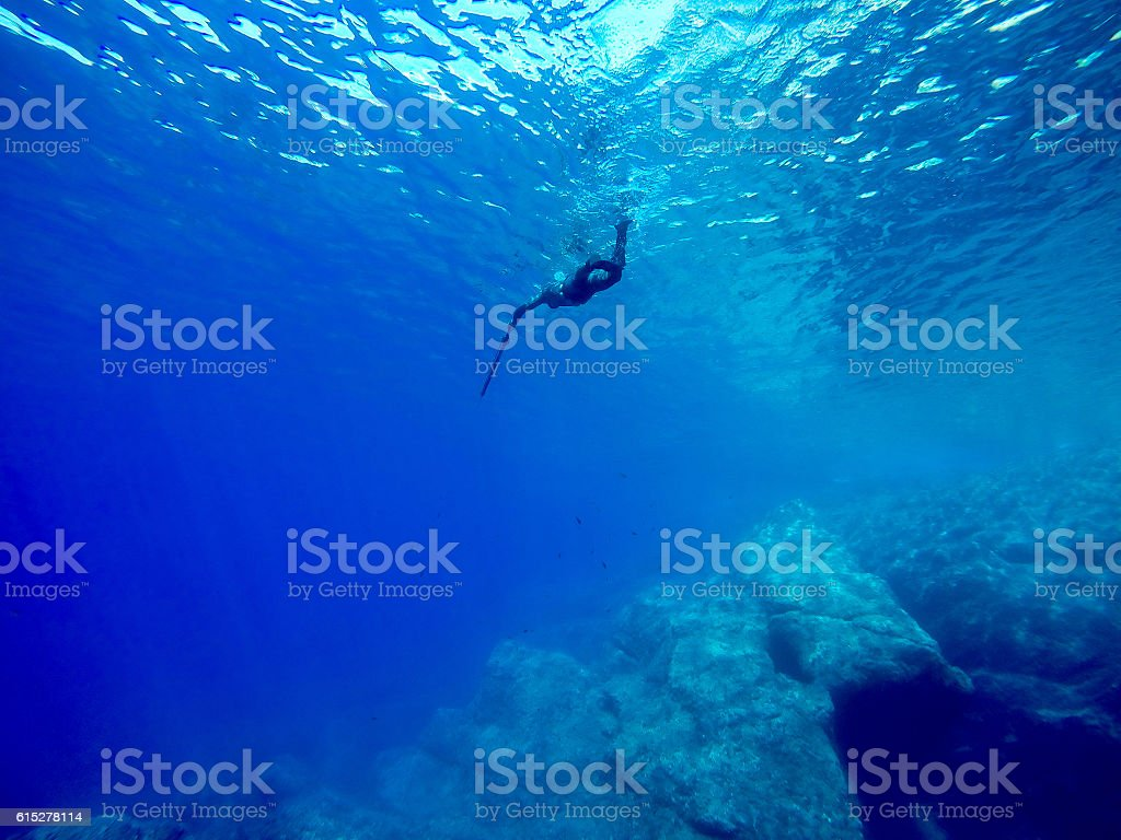 freediver spearfishing stock photo