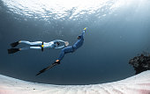 Freedivers in the sea