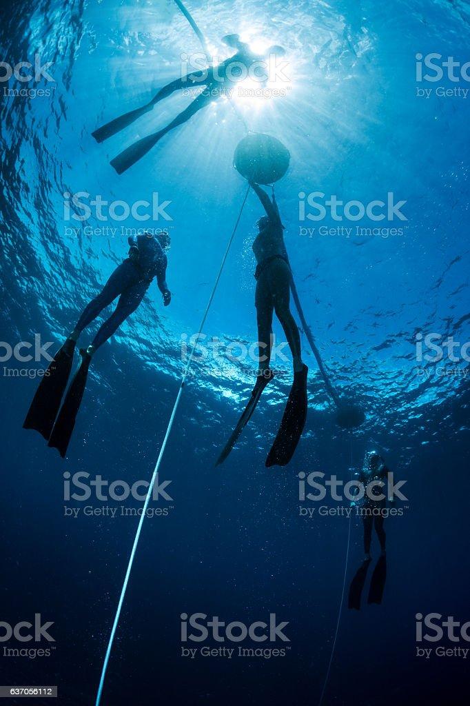 Freedivers training stock photo