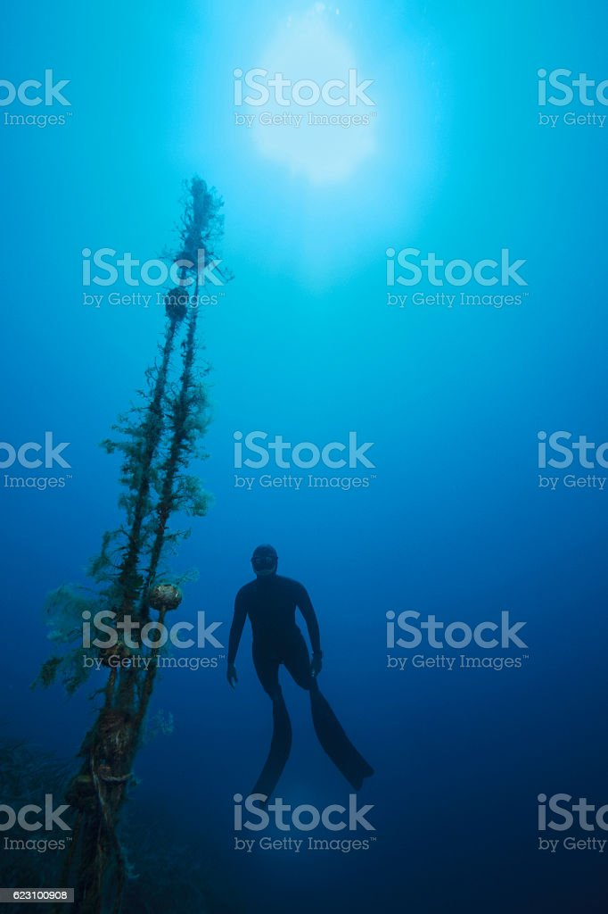 Freediving  Apnea  women snorkeling Underwater diving sea adventure stock photo