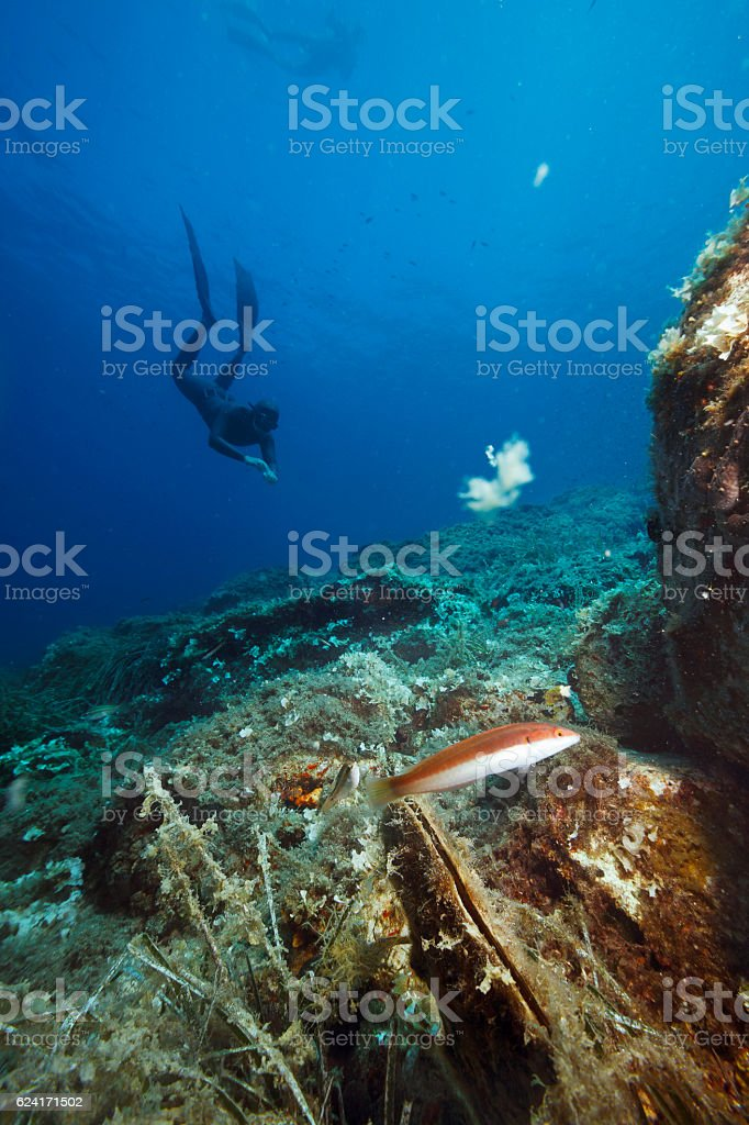 Freediving couple  Women and men snorkeling Underwater diving sea adventure stock photo