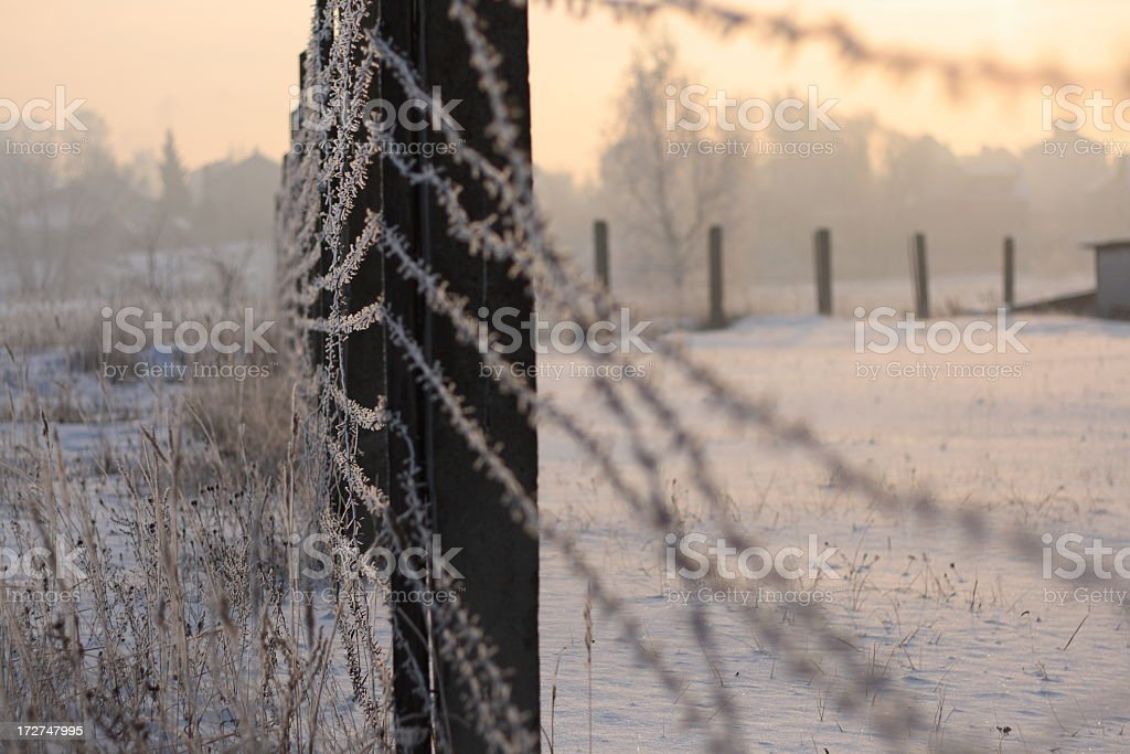 Freedom and prison stock photo