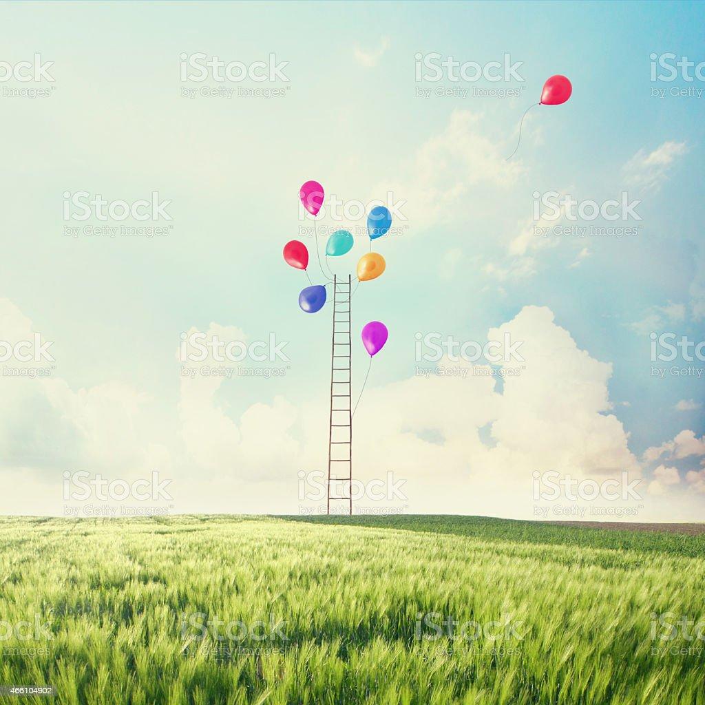 Freedom balloons flying stock photo