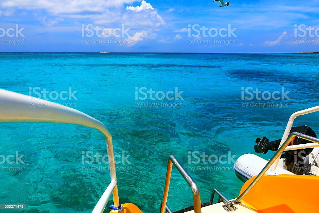 Freedom: Bird flying above Idyllic turquoise caribbean sea, ship, Aruba stock photo