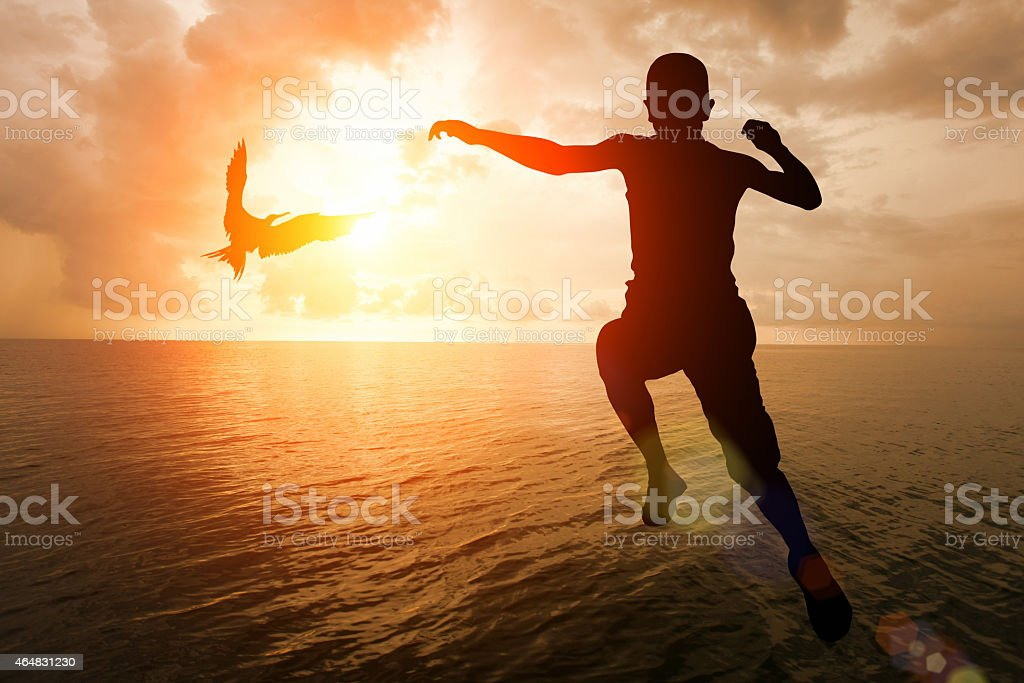 Freedom: boy jumping into sea water with flying bird stock photo