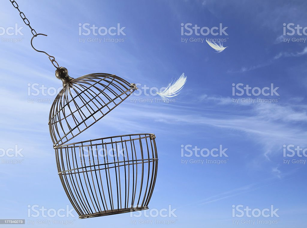 Freedom concept stock photo
