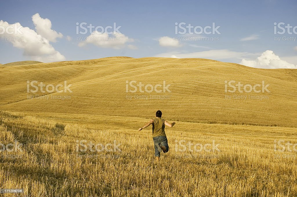 Freedom in Fields royalty-free stock photo