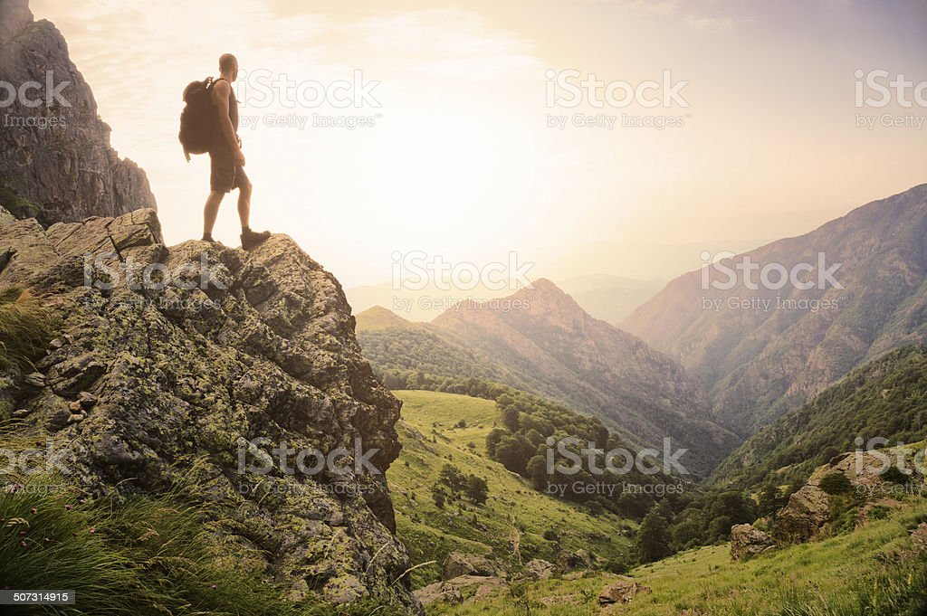 Freedom in the natural world stock photo