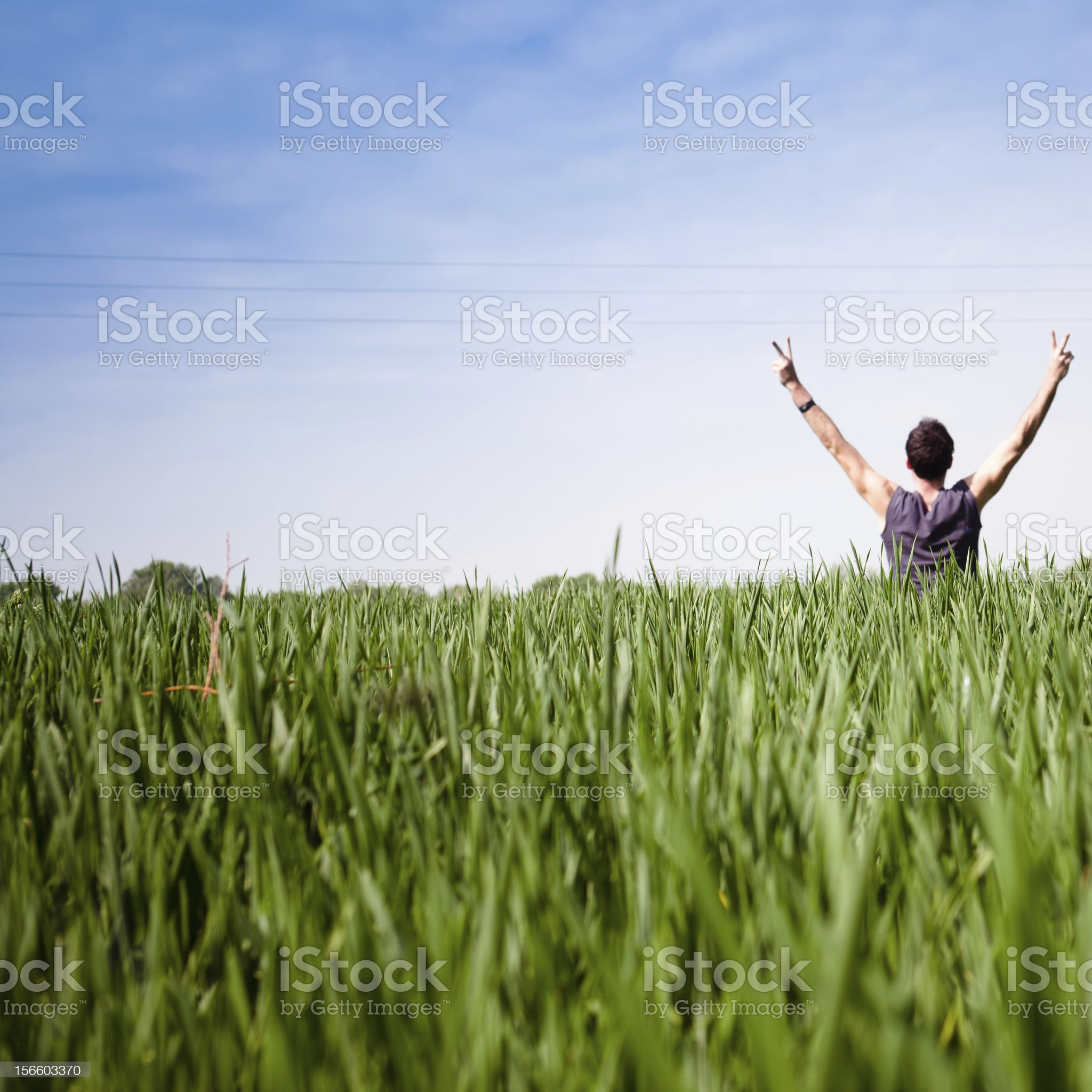 Freedom Man in spring royalty-free stock photo