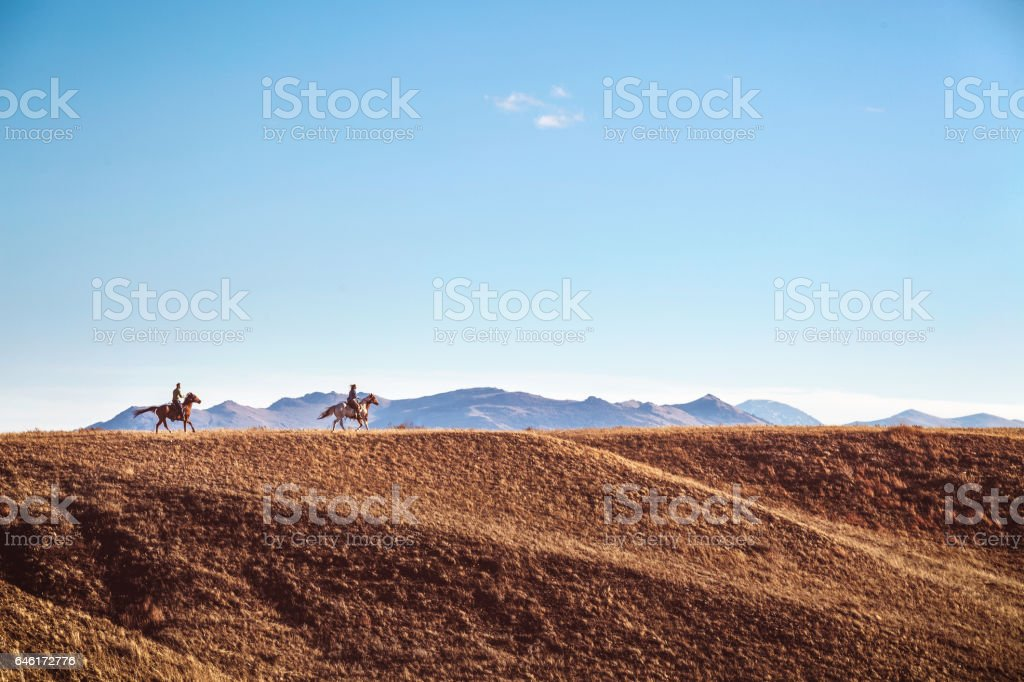 Freedom On A Horse stock photo