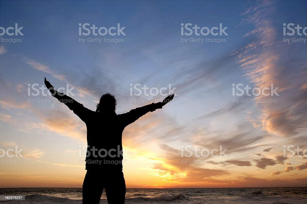 Freedom silhouette royalty-free stock photo