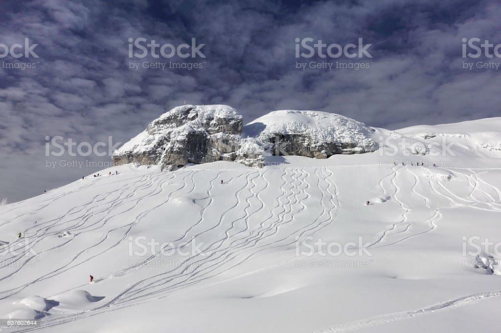 Freeriding in fresh Powder Snow, Snowboard, Ski, Austrian Alps stock photo