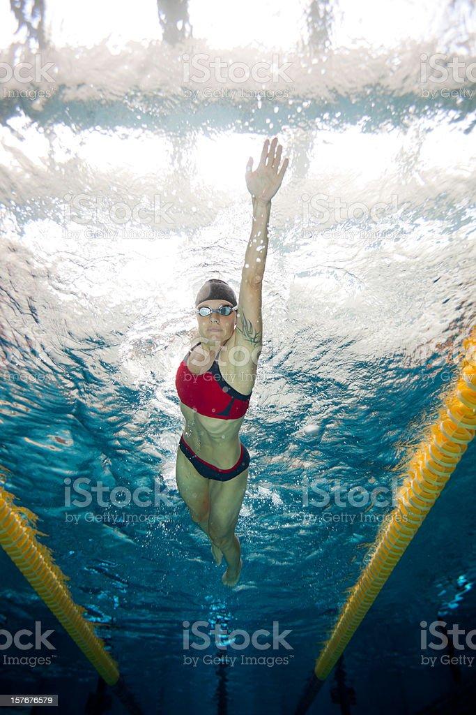 freestyle swimming underwater stock photo
