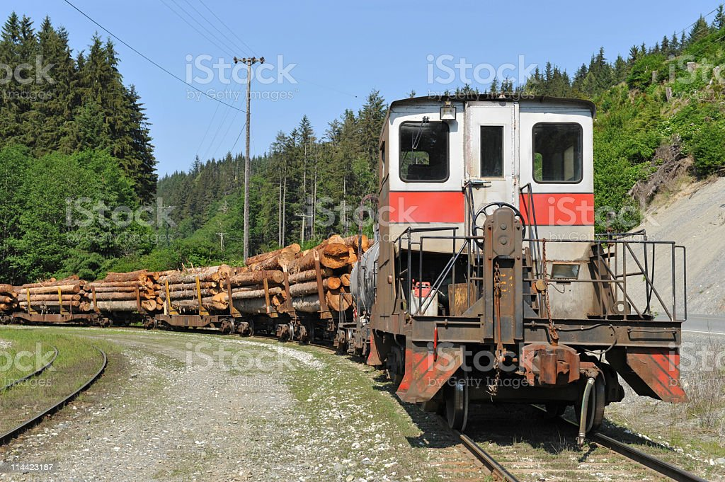 Freight train transporting sawed logs near Telegraph Cove,BC,Canada. royalty-free stock photo