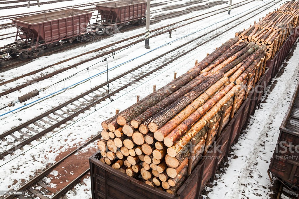 Freight wagons with logs stock photo