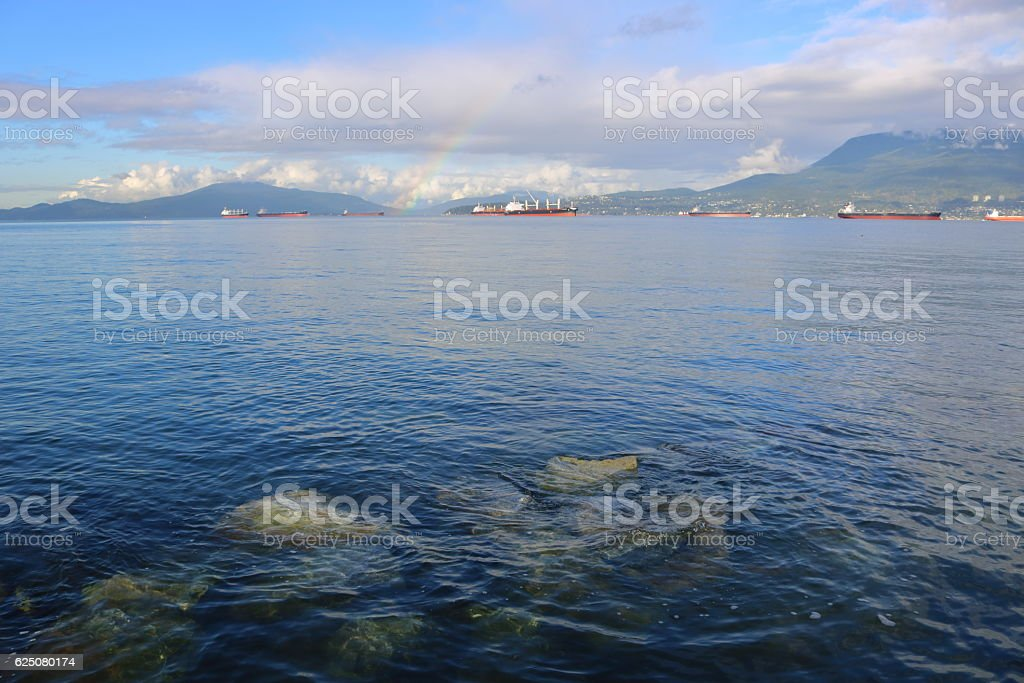 Freighters Anchored in English Bay stock photo