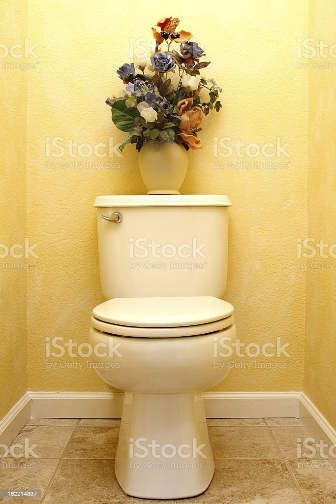 French Country Bathroom royalty-free stock photo