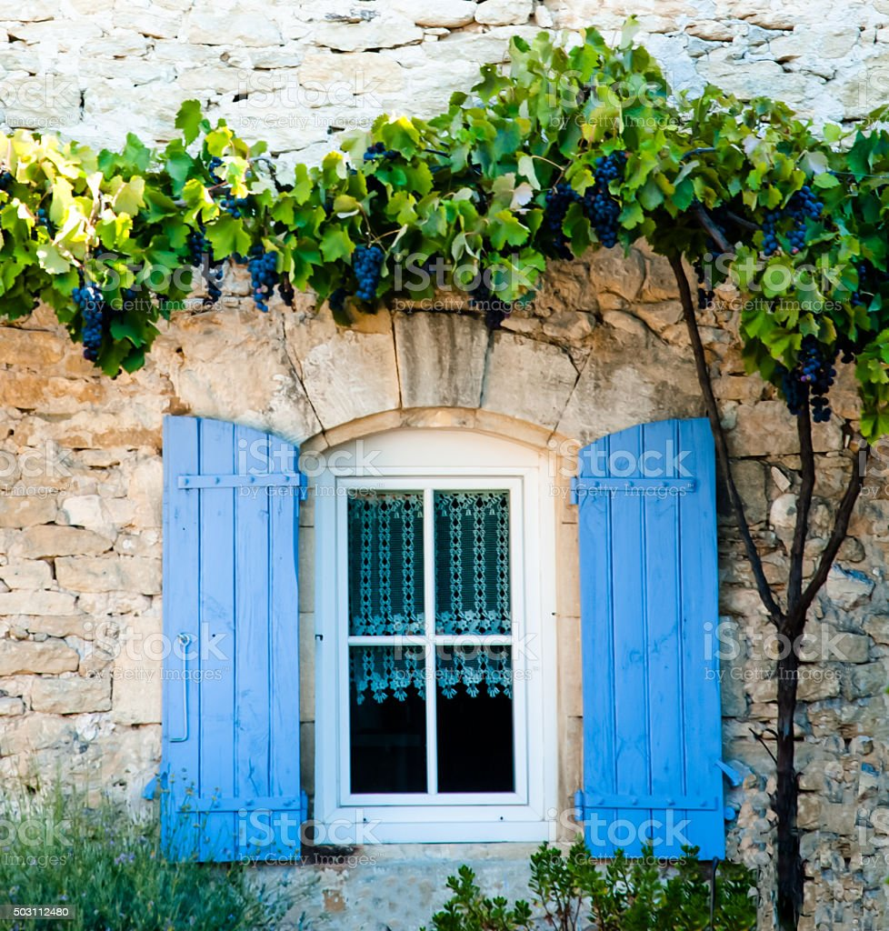 French Farmhouse Window with Grapevine stock photo