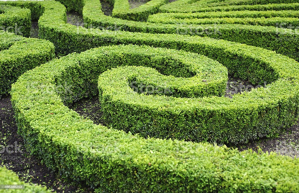 French formal garden in Paris stock photo