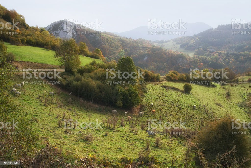 French landscape near Montsegur stock photo