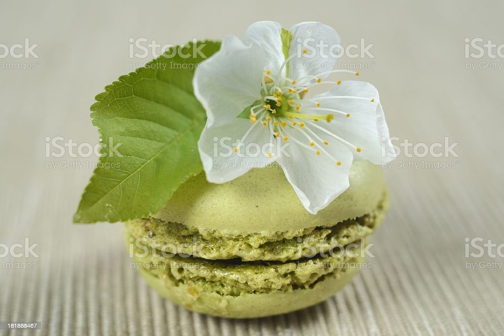 French macaroons with cherry flowers royalty-free stock photo