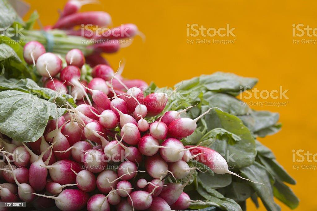 French Radishes at the Market stock photo
