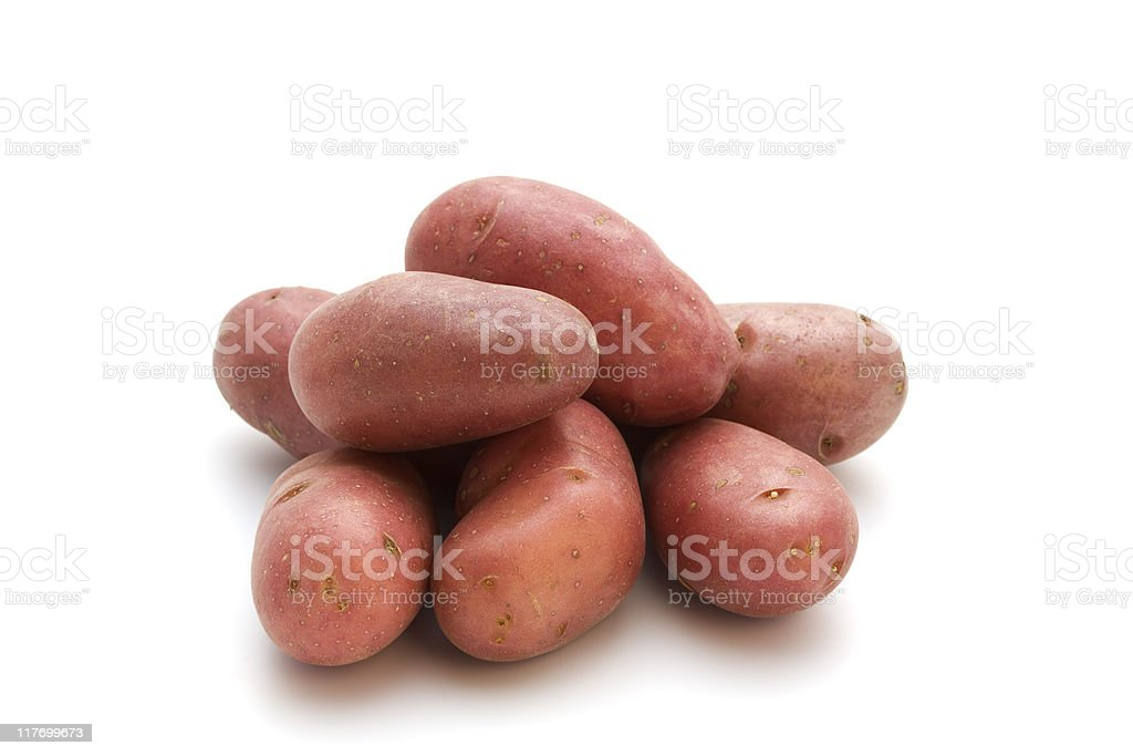 french red potatoes stock photo